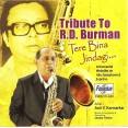 Tere Bina Jindagi - तेरे बिना जिंदगी - Audio CD
